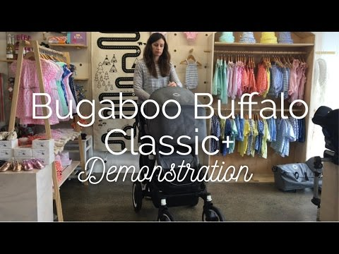Bugaboo Buffalo Classic Special Edition Demonstration