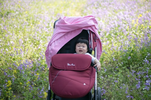 Baby in a stroller